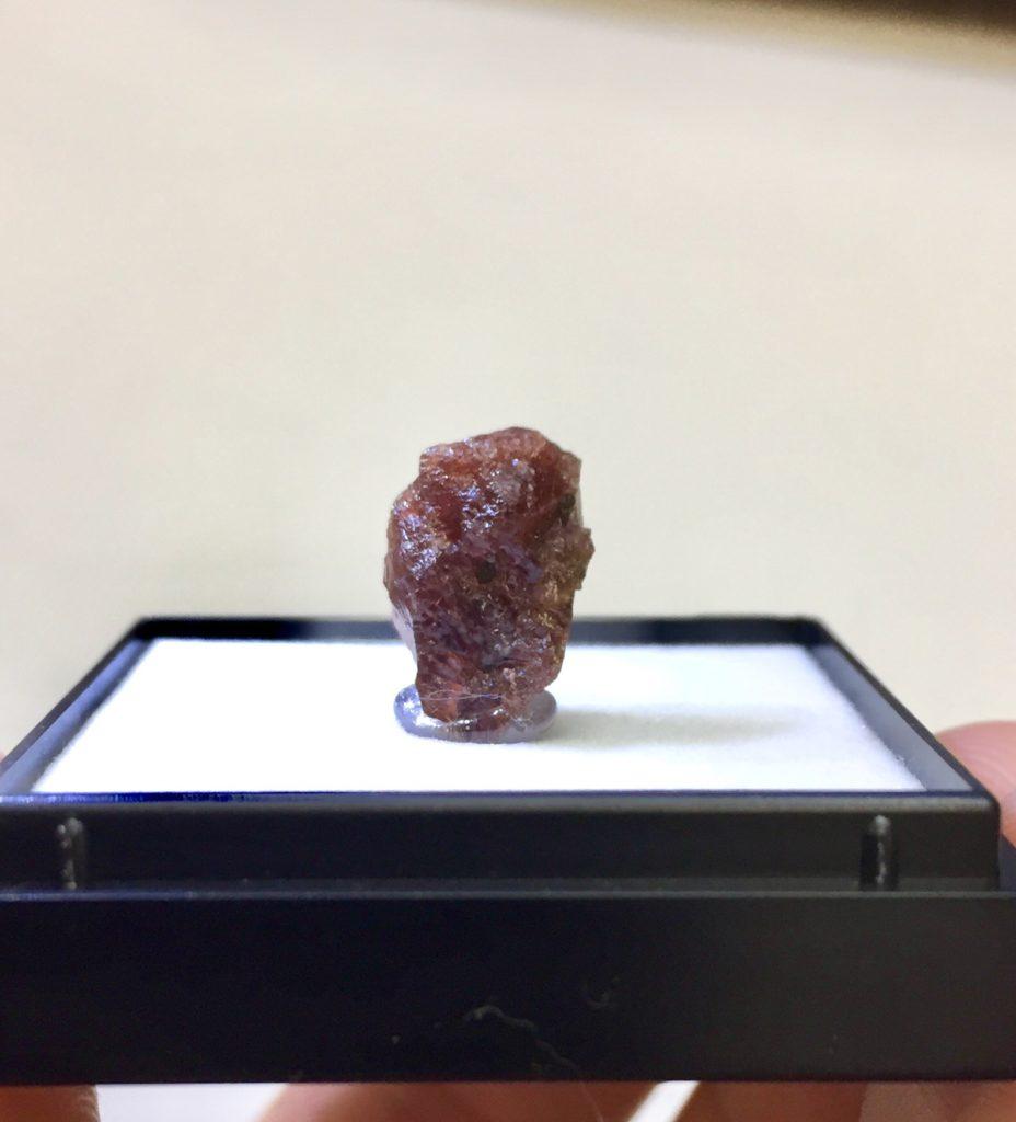 鉄ばん柘榴石/南極セールロンダーネ山地